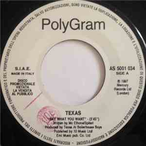 Texas / Wet Wet Wet - Say What You Want / If I Never See You Again download